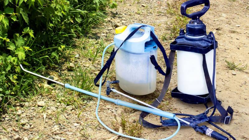 庭木の消毒、防虫対策
