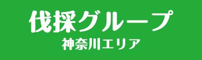 神奈川県の伐採・剪定は伐採グループ神奈川エリア